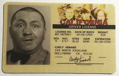 The Three Stooges - Curly - Drivers License - ID Card - Novelty v2