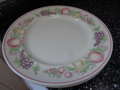 Boots Orchard Dinner Plates X 3