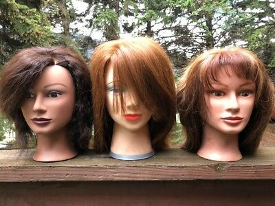Set 0F 3 Vintage Hair Mannequins Cosmetology  Real Hair Suzie-Kin Artistico