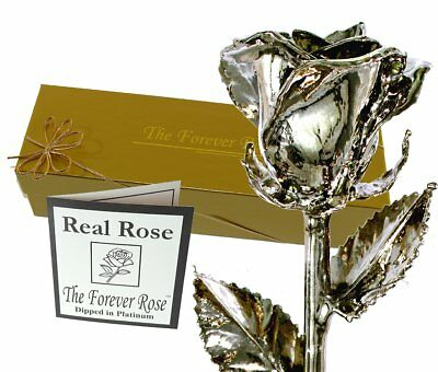 Platinum Dipped Real Rose w/Gold Gift Box by The Original Forever Rose USA