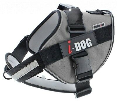 Harnais chien Neocity I-Dog taille L