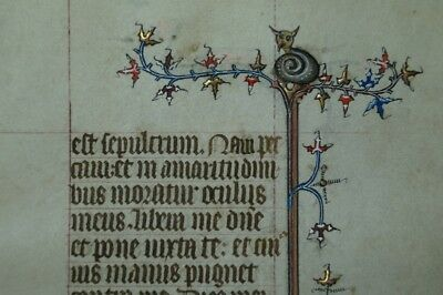 ILLUMINATED 14th Cent. Book of Hour leaf DRAGON + DROLLERY 2 BORDERS #B991