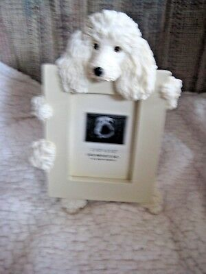 """E & S Imports White Poodle Dog Photo Picture Frame 2-1/2"""" X 3-1/2"""" NEW w/out box"""