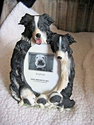 "E & S Imports Border Collie Dog Photo Picture Frame 3-1/2"" X 5"" NEW with box"