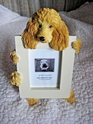 """E & S Imports Apricot Poodle Dog Photo Picture Frame 2-1/2"""" X 3-1/2"""" NEW w/0 box"""