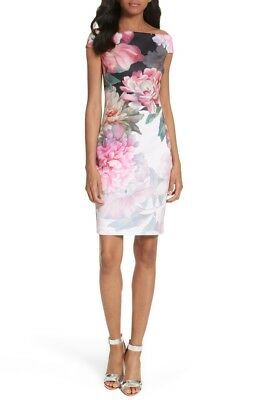13c3df2d6a042 NWT  295 Ted Baker Sz 5 US 14 Sheath Dress Floral Pink Emly Painted Off  Shoulder