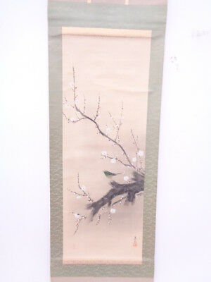 3606510: Japanese Wall Hanging Scroll / Hand Painted / Nightingale On Plum Ume T