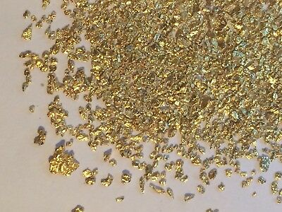 Gold Pay dirt 100% Unsearched and Guaranteed 40 + Gold Nuggets Added. (1 lb Bag)