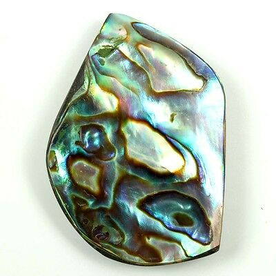 Amazing Color Play ABALONE SHELL Fancy Wholesale 28 Cts 30x21 mm Gems S-9784