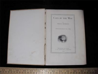 Cats by the Way by Sarah Trueblood Illustrated 1904