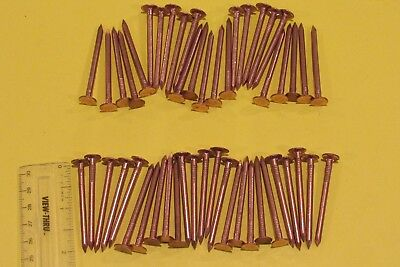 """2"""" Smooth Shank Solid Copper Roofing Nails, 11 gauge (50 qty) Free Shipping!"""