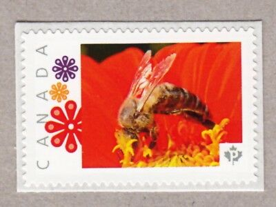 BEE INSIDE OF PINK FLOWER -Picture Postage MNH stamp Canada 2016 [p16/04-2be5/3]