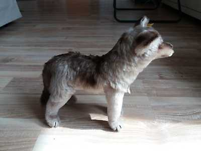 VINTAGE STEIFF WOLF 'LOOPY 1325-00' 1964 RARE:  WITH TAGS AND BUTTON: 26cm LONG