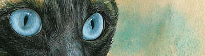 WATERCOLOR PAINTING ART PRINT Beautiful Seal Point Siamese Cat Eyes, framed, new