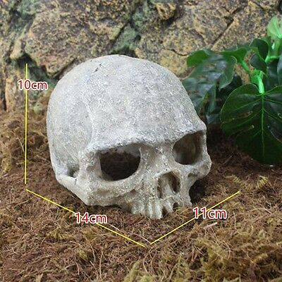 Aquarium Human Head Skull Fish Water Tank Ornament Landscape Halloween Prop