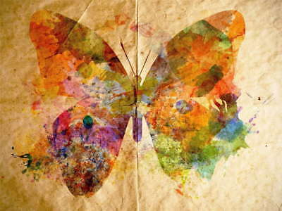 109986 PAINTING DRAWING GRUNGY WATERCOLOUR BUTTERFLY Decor WALL PRINT POSTER CA