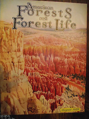 1929 Aug ~ American Forest Magazine ~ American Foresty Association ~ Very Nice