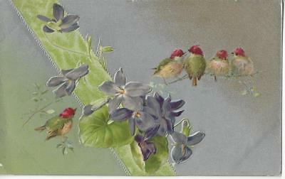 Four Beautiful Goldfinch Birds Embossed Flowers, Silver Background 1919 W& K Pc