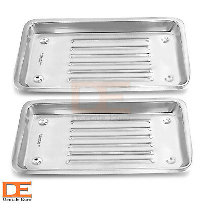 Dental Scaler Tray Dentist Surgical Instruments Set Of 2 Veterinary Tools Lab CE