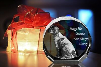 Personalised 3D Laser Etched CRYSTAL GLASS GIFT SIZEXL (YOUR PHOTO IN A CRYSTAL)