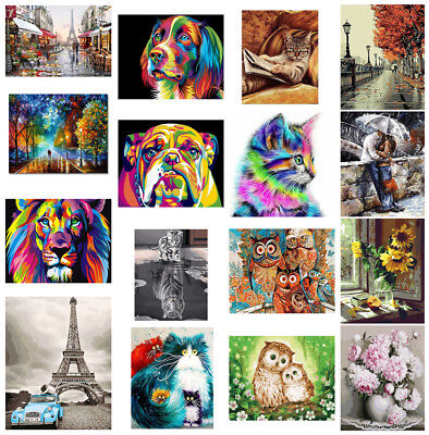 1x DIY Painting Digital Oil By Number Kit Paint Home Wall Art On Canvas 40*50cm