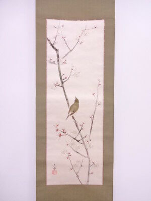 3675662: Japanese Wall Hanging Scroll / Hand Painted / White Ume Blossom Artist