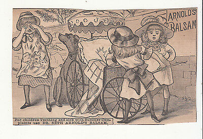 Dr. Seth Arnold's Balsam Gilman Brothers Baby Carriage Dog Vict Card c1880s