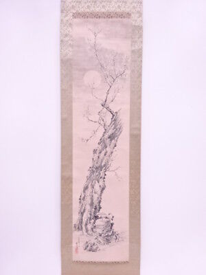 3680962: Japanese Wall Hanging Scroll / Hand Painted / Ume Blossom