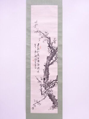 3681036: Chinese Wall Hanging Scroll / Hand Painted / Ume Blossom Artist Work