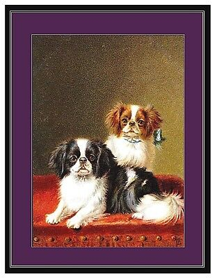 Japanese Chin  Dog Duo on Table Puppy Dogs Puppies Vintage Art Poster Print