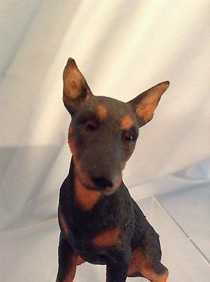 """Country Artists Dogs  Doberman Puppy Resin Figurine 03751 3.75"""" with box $9.99"""