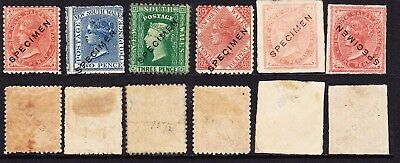 L2 NSW  SPECIMENS stamps from Presentation sheets  & High Cat