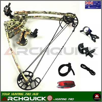 New Triangle Compound Bow Archery Hunting Target Shooting Right Left Hand 50lbs