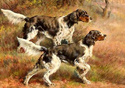 Antique Hunting Reproduction 8X10 Osthaus Photo Print Pair Of English Setters