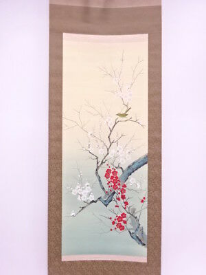 3691689: Japanese Wall Hanging Scroll / Hand Painted / Red & White Ume Blossom