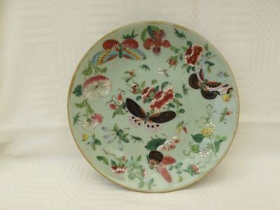 Antique Chinese Celadon Plate,hand Painted Butterflies