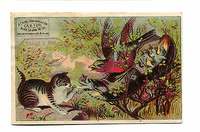 Victorian Trade Card SHAUB & BRO Boots Shoes Lancaster PA bird using shoe nest