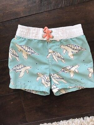 Baby Gap Boys Swimsuit Bottoms Size 12-18 Months