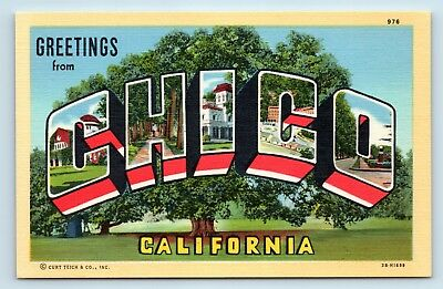 Large letter greetings from chico california unused vintage large letter greetings from chico california unused vintage postcard c2 m4hsunfo