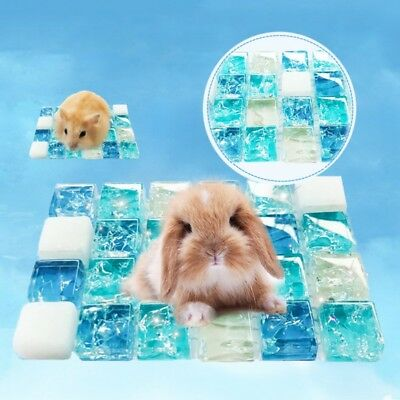 Small Cute Pet  Summer Cooling Mat Pad Rabbit Hamster Chinchilla Sleep Cold Bed