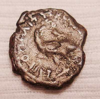 Ancient Roman Coin Turtle Free Shipping