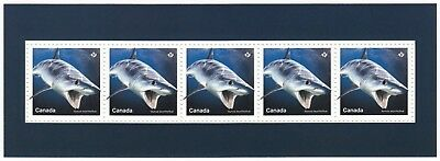 SHORTFIN MAKO SHARK = Sharks in Canadian Waters= SS from Uncut Sheet Canada 2018