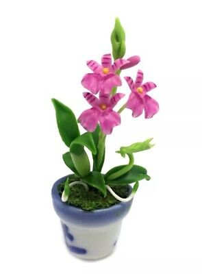 Dollhouse Miniature Pink Oncidium Orchid Flower In Pot 1:12 Scale 4cm US Seller