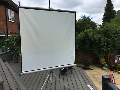 Projector Screen With Tripod , Pro 175 T (collection only)