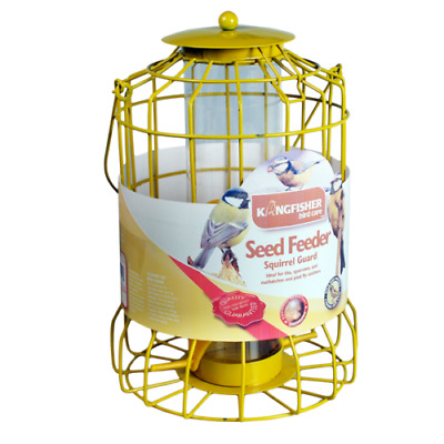 Hq Bird Seed Feeder Garden Hanging Tray Kingfisher Squirrel Proof Guard New