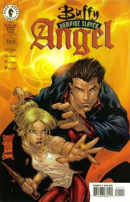 Buffy the Vampire Slayer / Angel: The Hollower #1