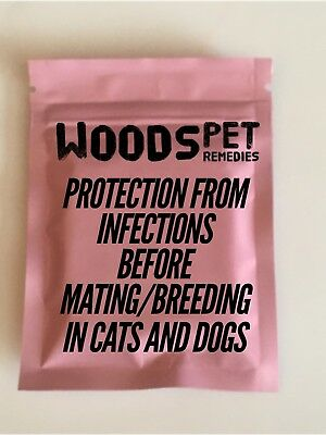 40 x 250mg amox Capsules To Rid Dogs Of Any Infections Before Mating Breeding