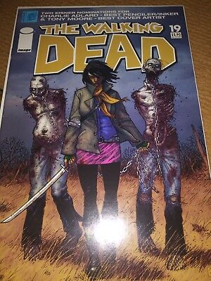 The Walking Dead #19 (Jun 2005, Image) First appearance of Michonne!