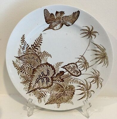 Antique brown transfer ware cup saucer and plate Botanical with Bird TRIO