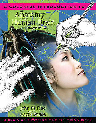 A Colorful Introduction to the Anatomy of the Human Brain: A Brain and Psycholog